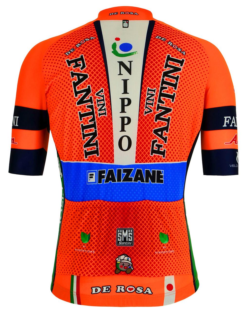 2019 Vini Fantini Nippo Jersey Rear