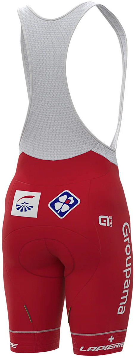 2020 Groupama FDJ Swiss Champion Bib Shorts Rear