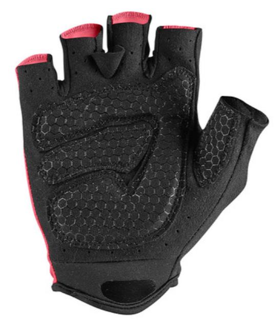 2020 Giro D' Italia Gloves Rear