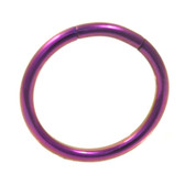 Purple Steel Segment Ring Seamless Hoop 16G (2 Sizes)