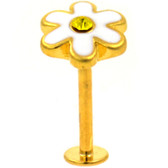 White Daisy Gold Plated Labret Monroe Bar 16g 5/16""