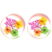 "Enclosed Real Flowers Clear Acrylic Plugs (4g-5/8"")"
