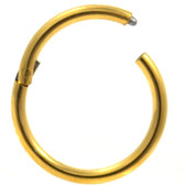 Gold-Tone Steel Hinged Segment Ring Hoop 16G
