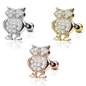Flashy Owl Steel Cartilage Tragus Stud