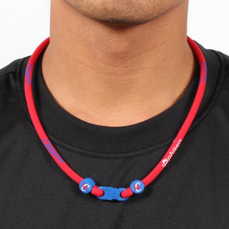 Los Angeles Clippers NBA Titanium Necklace