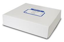 Silica Gel GHLF 250um 20x20cm scored (2.5x20cm) w/Pread. Zone (25 plates/box) P42311