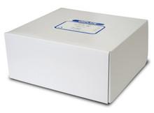 Alumina GF 250um 10x20cm scored (25 plates/box) P04521