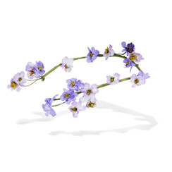 Elanur - Lilac Vintage Flowers Reverse Headband by Ann Shoebridge Milliner