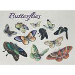 Butterflies Notecards