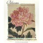 Blooms Notecards