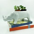 White Rhino Planter