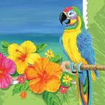 Tropical Theme Gifts