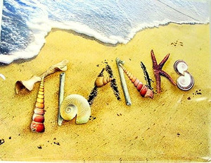 Beach & Shell Thank You Note Cards Pack of 8 - BTN35875