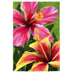 Hibiscus Beauty Tropical House Flag 13A2461