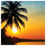 Palm Tree Sunset Single Absorbent Coaster - SB72584