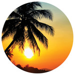 Palm Sunset Absorbent Stone Coaster for Car Cup Holder CB72837