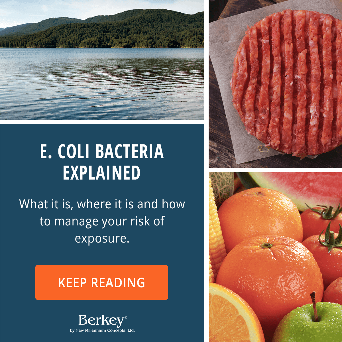 Watch How Can I Protect Myself from E.coli video