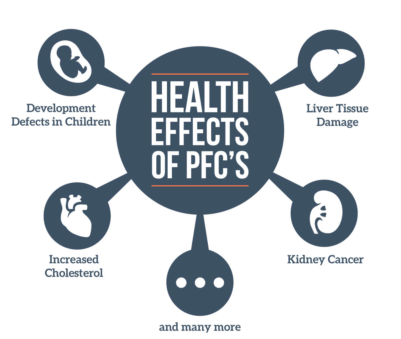 Image of the potential health effects of pfcs