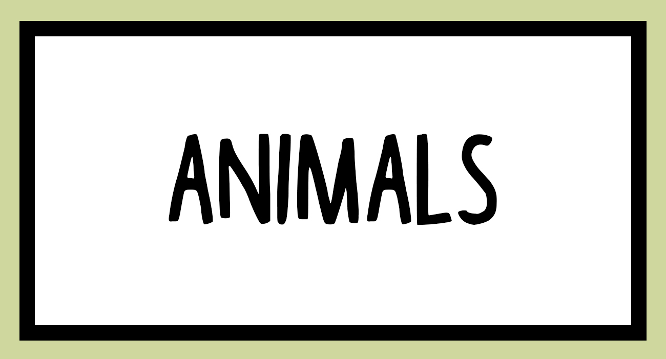 animalsbutton.jpg