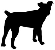 "Jack Russell Terrier Dog Vinyl Decal Sticker - JRT Parson Fox 5"" x 5"""