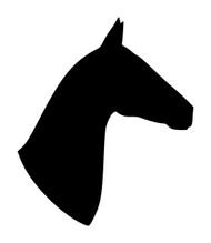 Horse Head -V3- Vinyl Decal Sticker - Equestrian Farm Riding Dressage Equine Profile Silhouette