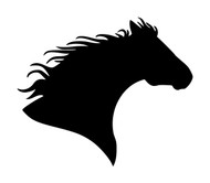 Horse Head -V6- Vinyl Decal Sticker - Equestrian Farm Riding Dressage Equine Profile Silhouette