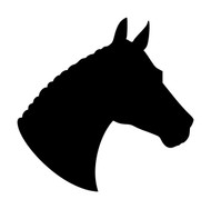 Horse Head -V7- Vinyl Decal Sticker - Equestrian Farm Riding Dressage Equine Profile Silhouette