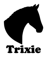 Horse Head -V1- with Personalized Name Vinyl Decal Sticker - Equestrian Farm Riding Dressage Equine Profile Silhouette