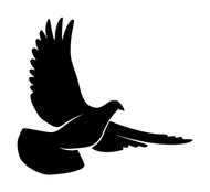 DOVE Vinyl Decal Sticker -V5- Bird Peace Love Hope Salvation Mother Mary