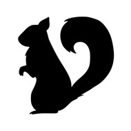 "Squirrel Vinyl Decal Sticker - Tree Ground Rodent Flying Chipmunk Marmot 5"" x 5"""
