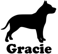 "American Pit Bull Terrier Dog Vinyl Decal Sticker with Custom Personalized Name 5"" x 5"""