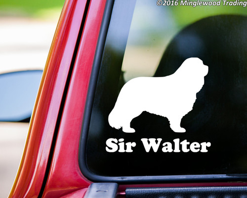 """White custom vinyl decal of a Cavalier King Charles Spaniel with the name """"Sir Walter"""" beneath. By Minglewood Trading. Applied to the rear window of a pickup truck."""