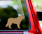 Light Brown custom vinyl decal of a Bernese Mountain Dog. By Minglewood Trading. Applied to the rear window of an truck.