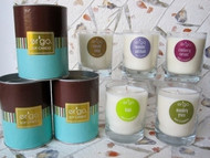 Ergo Soy Candle Spectrum Collection - 7oz Candle in Clear Glass- Coconut Pineapple