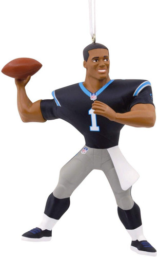 carolina panthers cam newton nfl