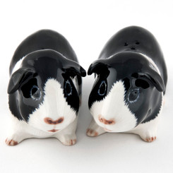 Guinea Pig Salt and Pepper Black/White