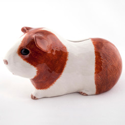 Guinea Pig Money Box Dutch