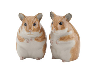Hamster Salt and Pepper