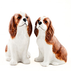 Cavalier King Charles Spaniel Salt and Pepper Blenheim