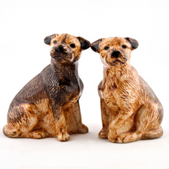 Border Terrier Salt and Pepper