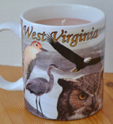 West Virginia Birds Mug, Citronella