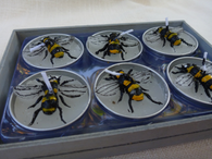 Bee Votive Set