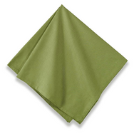 Sonia Napkins Forest Green Set of 6