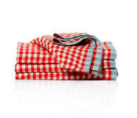 2 Tone Gingham Napkins (Crimson/Aqua), Set of 4