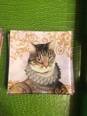 KNIGHT CAT