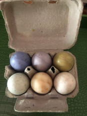 French Lavender Egg Soaps, set of 6