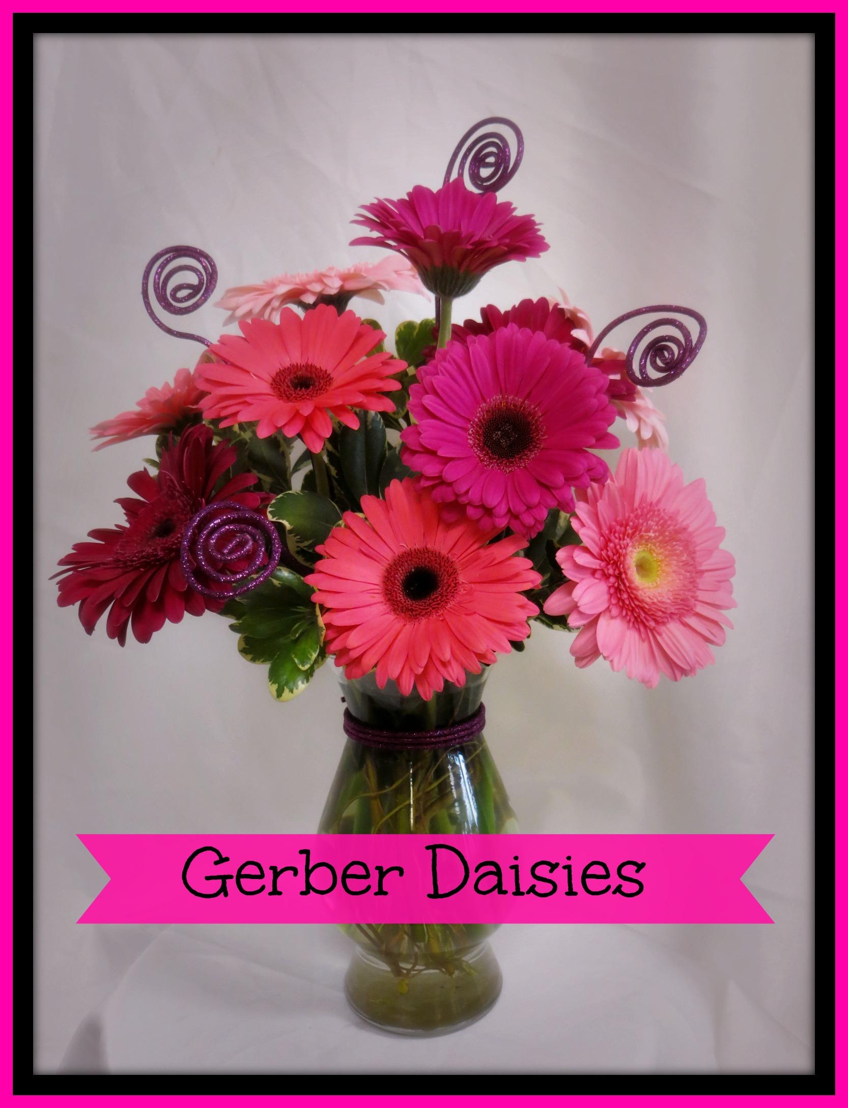 deer-park-florist-gerbera-daisies.jpg