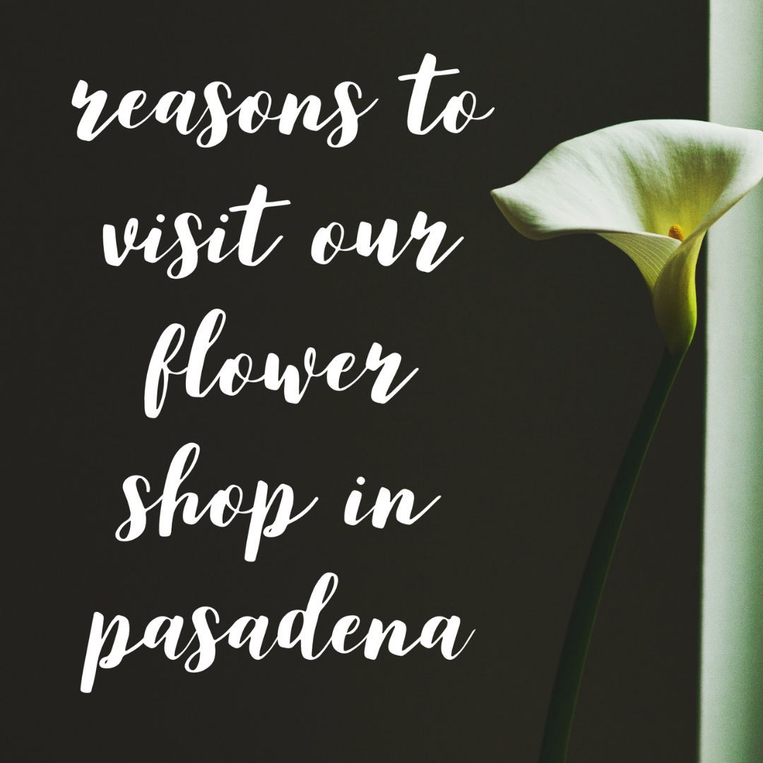 Reasons To Visit A Flower Shop In Pasadena Tx Enchanted Florist