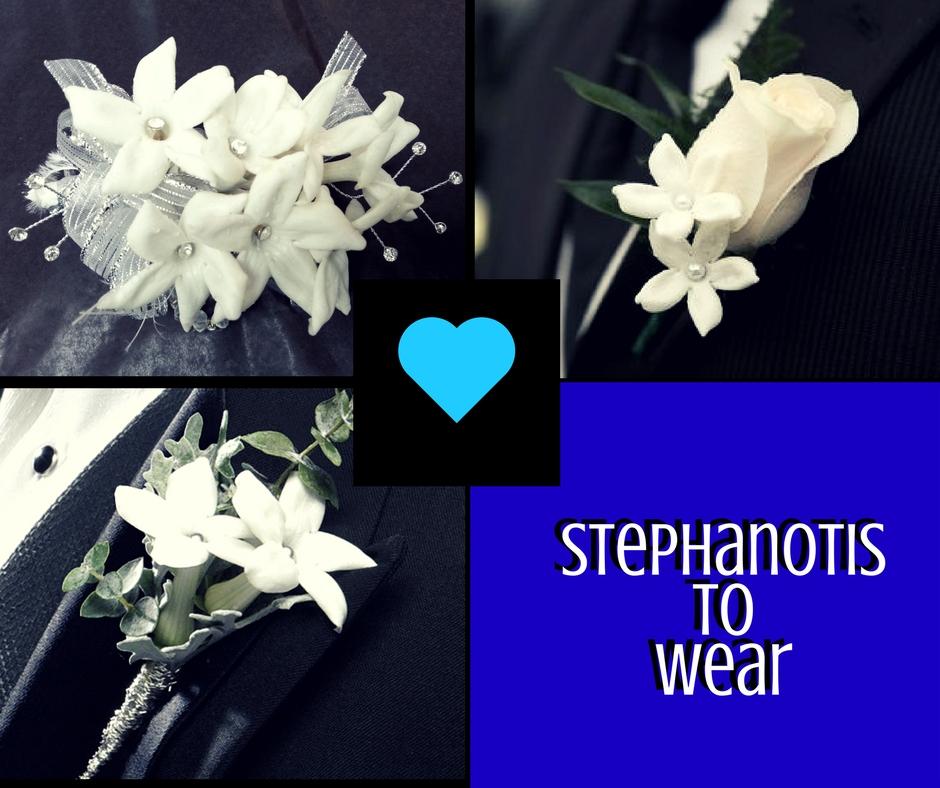 stephanotis wedding florist flowers pasadena houston 3