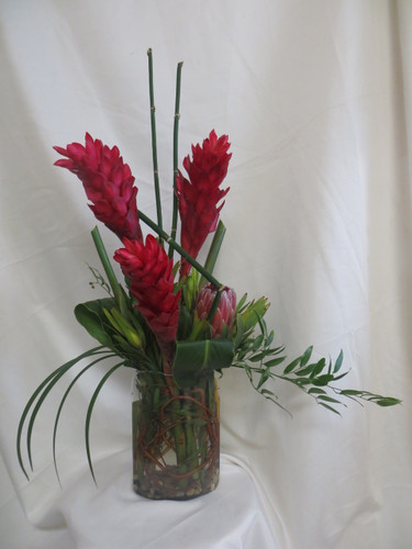 Red Hot Ginger Tropical Bouquet by Enchanted Florist Pasadena TX. Lovely tropical red ginger in a clear oblong vase with greenery accents. Includes lily grass, ti leaves and equisetum designed by our professional designers for a modern unique look. Red Ginger Flower Delivery SKU RM182